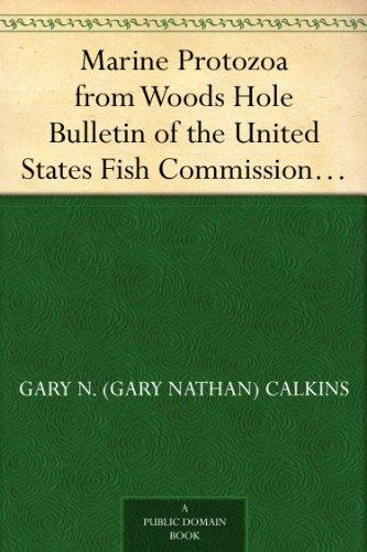 (Marine Protozoa from Woods Hole Bulletin of the United States Fish Commission 21:415-468, 1901)