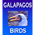 Galapagos Birds: Wildlife Photographs from Ecuador's Galapagos Archipelago, the Encantadas or Enchanted Isles, and the words of Herman Melville, Charles ... FitzRoy (Galapagos Islands Nature Series)