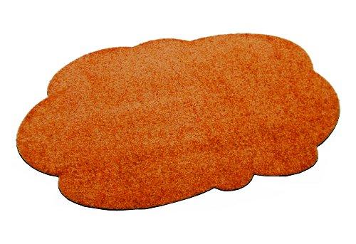 Deko-Matten-Shop Fußmatte Classic, Schmutzfangmatte, Wolke, 70x100 cm, schwarz, in in in 8 Größen und 11 Farben B06WGQ3TGY Teppiche & Lufer 51c644