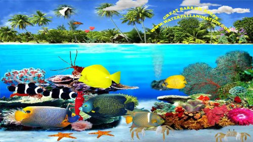 Great Barrier Reefs [Download] by Waterfall Animation