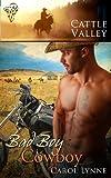 Bad Boy Cowboy by Carol Lynne front cover