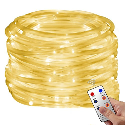 Chasing Led Rope Christmas Lights