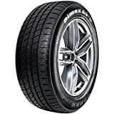 Radar Dimax AS-8 All-Season Radial Tire - 245/45R17 99W