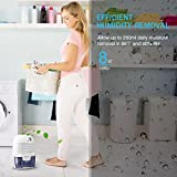VicTsing Dehumidifier, Portable Air Dehumidifier for Home Intelligent Auto Off, Home Small Dehumidifier for Bedroom