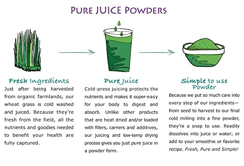 Wheat Grass Juice Powder - Pure Synergy Organics