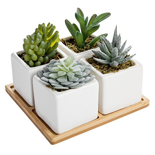 MyGift Set of 4 Mini Artificial Succulent Plants with Bamboo Display Tray by MyGift