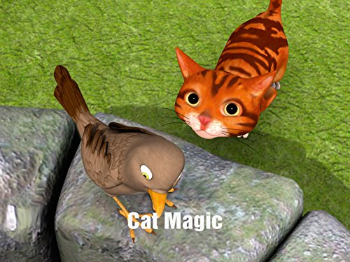 - Cat Magic