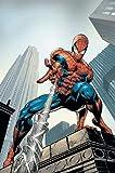 : Amazing Spider-Man by J. Michael Straczynski Omnibus Vol. 2
