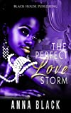 Bargain eBook - The Perfect Love Storm