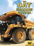 Big Cat Machine Action