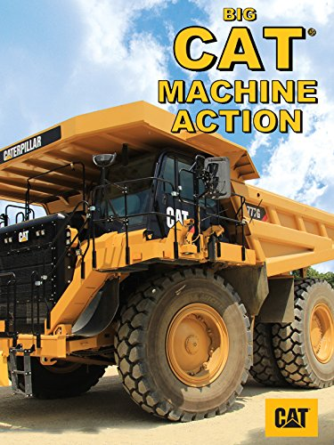 Big Cat Machine Action