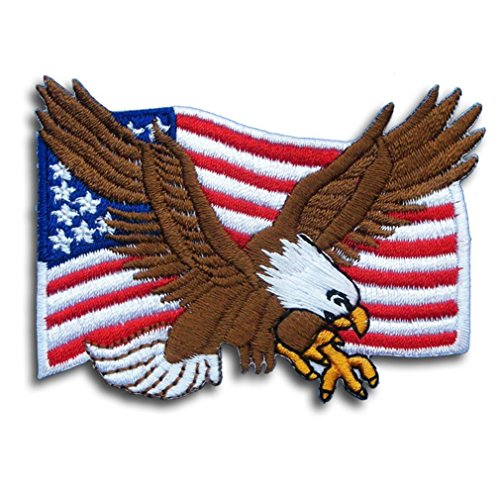 USA National Bird Embroidery Iron on Patch - American Bald Eagle & USA Flag Applique (Embroidery Flag Eagle)