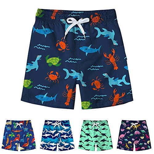 Freshhoodies Toddler Boys Swim Trunks Elastic Drawstring Funny Beach Board Shorts Quick Dry Swim Shorts (Dinosaur-2, 4-5T)