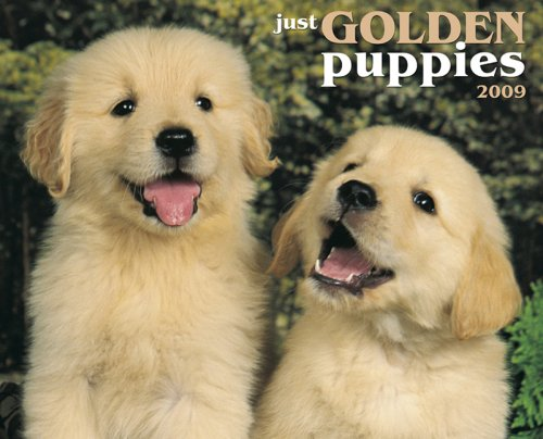 Just Golden Puppies 2009 Calendar (Just (Willow Creek))