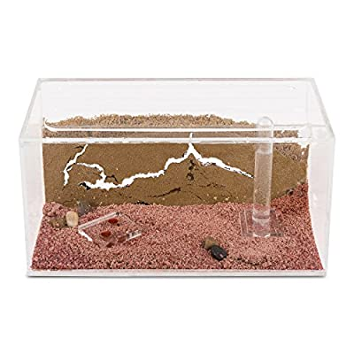 Sand Ant Farm - Educational formicarium for Live Ants: Toys & Games