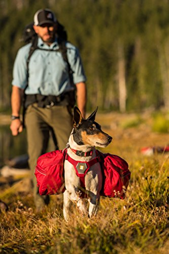 RUFFWEAR - Palisades Dog Backpack and Harness for Hiking and Camping, 2 Detachable Saddlebags, 2 Collapsible Hydration Bladders (1 Liter Each), Medium