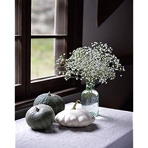 JUSTOYOU 10pcs Artificial Babies Breath Flowers Fake Gypsophila PU Silica for Wedding Bridal Bouquet Home Floral Arrangement White 2