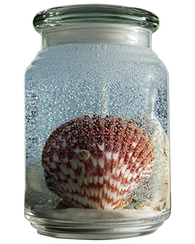 Gellite Candles 26oz Scented Jar Candle with Sea Shells S...