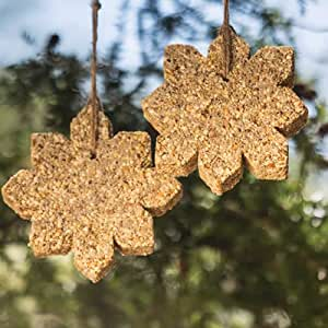 Duncraft Snowflakes Seed Ornaments, Set of 2