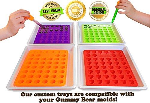 51BqyR3cIIL - My Fruit Shack DIY Fruit Snacks Kit - 4 BPA-Free LFGB/FDA Grade Silicone Molds (Makes 184 Gummies Total), 4 Plastic Trays, 2 Droppers and 1 Basic Recipe Page