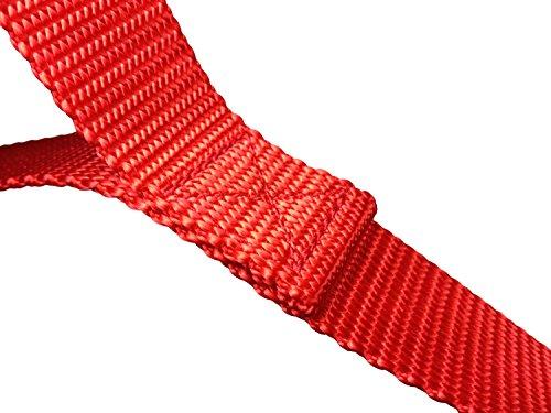 Buy dog harness leash training