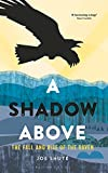 A Shadow Above: The Fall and Rise of the Raven