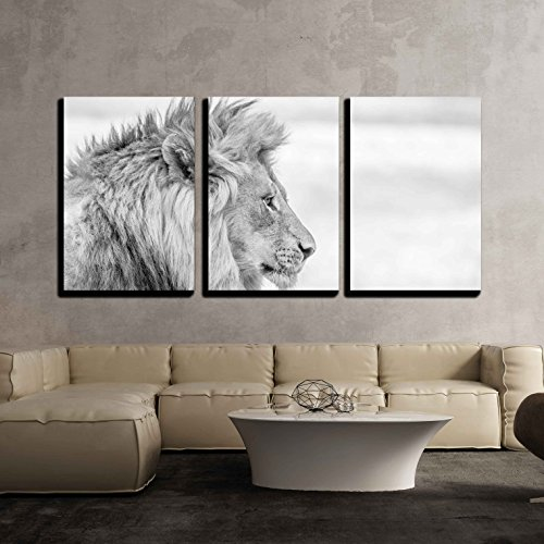 "Wall26 - 3 Piece Canvas Wall Art - Side Profile of a Lion in Black and White in the Kruger National Park, South Africa. - Modern Home Decor Stretched and Framed Ready to Hang - 16""x24""x3 Panels"