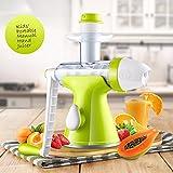 jack lane juicer blade - Fruits Vegetables Hand Juicer – Suction Base- Kids Juicer Ice-cream Maker Juice Extractor Masticating Extruder Manual Hand Crank Single Auger Juicer