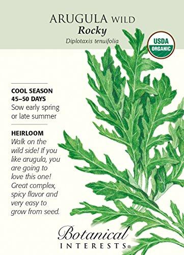 (Botanical Interests, Seed Arugula Wild Rocket Salad Organic)