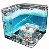 Toys Best Deals - Nature Advanced Ant Nursery Farm Maze Gel Live with Feeding System Ant Novelty Habitat Home Villa Blue Kids Children Toy Science