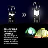 Etekcity-2-Pack-Portable-LED-Camping-Lantern-Flashlights-with-6-AA-Batteries-Survival-Kit-for-Emergency-Hurricane-Outage-Black-Collapsible