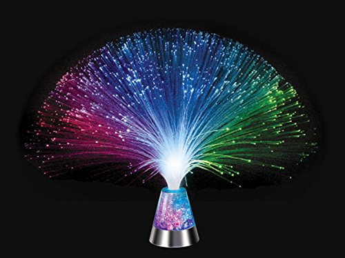 (Westminster Multi-Sensory Glacier Fiber Optic Light)