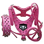 haoyueer Medium & Large Dog Leather Spiked Studded Dog Harness,Collar & Leash 3Pcs Set for Pit Bull,Mastiff, Boxer, Bull Terrier 29