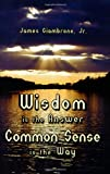 Wisdom Is the Answer-Common Sense Is the Way, James  Giambrone, 1934759333
