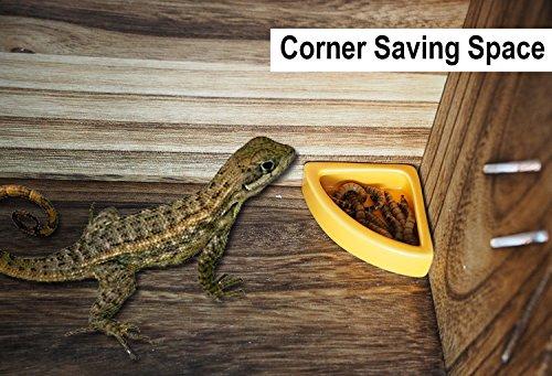 Ceramic 1/4 Round Mini Worm Dish Reptile Gecko Ledge Feeder Corner Space Saving Designing ()