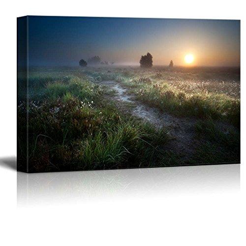 Beautiful Scenery Landscape Misty Sunrise over Countryside Path Through Swamps Fochteloerveen Drenthe Netherlands Nature Beauty Wall Decor ation