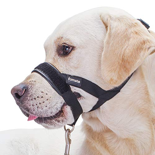 Buy dog muzzle to prevent biting