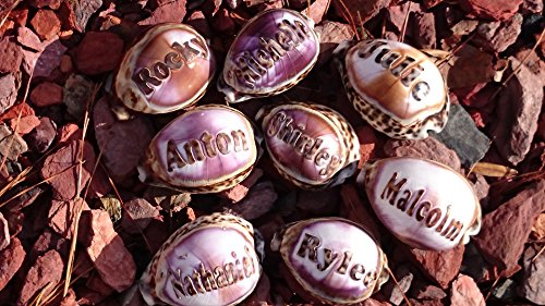 'Tucker' Personalized Name Engraved on a Tiger Cowrie Seashell. Hand Made - (Tucker Accents)