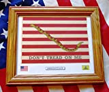 Cheap Framed Revolutionary War Flag…Don't Tread On Me…1st Navy Jack
