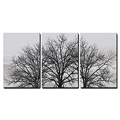 3 Piece Canvas Wall Art - Trees in Winter Gray Landscape - Modern Home Art Stretched and Framed Ready to Hang - 24