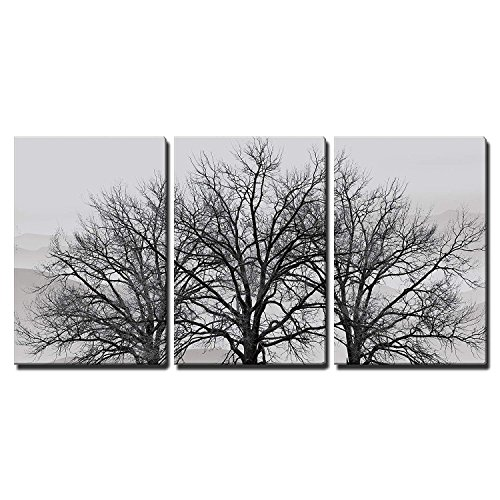 Branch Wall Art - wall26 3 Piece Canvas Wall Art - Trees in Winter Gray Landscape - Modern Home Decor Stretched and Framed Ready to Hang - 24