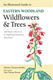 img - for An Illustrated Guide to Eastern Woodland Wildflowers and Trees: 350 Plants Observed at Sugarloaf Mountain, Maryland (Center Books) book / textbook / text book