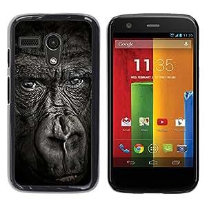 PC/Aluminum Funda Carcasa protectora para Motorola Moto G 1 1ST Gen I X1032 big ape gorilla black nature animal / JUSTGO PHONE PROTECTOR