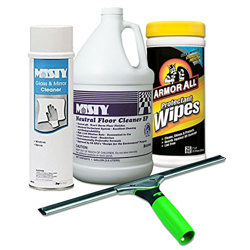 ErgoTec Squeegee, 18'' Wide Blade + Misty Glass & Mirror Cleaner w/Ammonia, 19oz Aerosol + Misty Neutral Floor Cleaner EP, Lemon, 1gal Bottle + Auto Protectant Wipes, 25/Canister by ACT Supplies