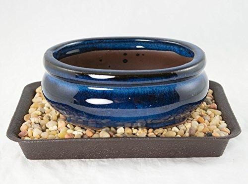Blue Ceramic Bonsai Pot - 5