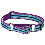 Blueberry Pet 8 Colors 3M Reflective Multi-Colored Stripe Safety Training Martingale Dog Collar, Violet and Celeste, Large, Heavy Duty Adjustable Collars for Dogs Larger Image