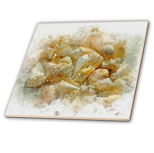 3dRose Anne Marie Baugh - Impressionist Mixed Media Art - Image Of Watercolor Beach Seashells Art - 8 Inch Glass Tile (ct_318726_7)