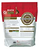 Purina   Nutritionally Complete Duck Feed for All