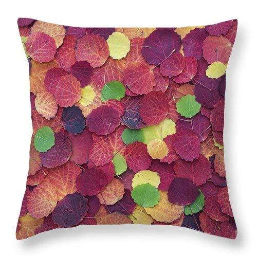 DIY Throw Pillow Covers Funda de Almohada Decorativa de ...