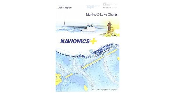 Navionics+ Global Regions Marine and Lake Charts on SD/MSD: Amazon.es: Electrónica